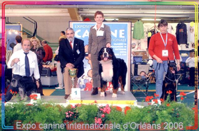 best orlean 2006.jpg