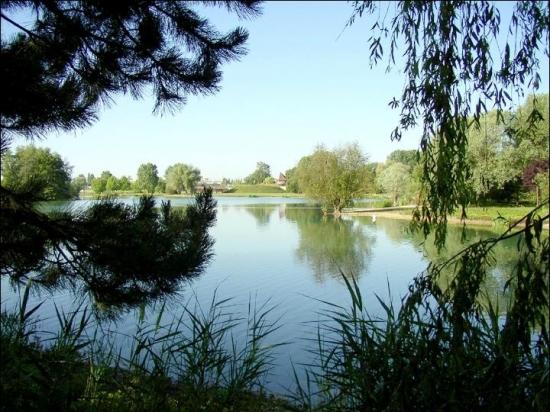 lacs-chalette-sur-loing-france-3016321064-671472.jpg